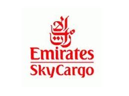 logo emirate equalized